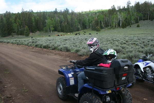 Utah's Piaute-Trail